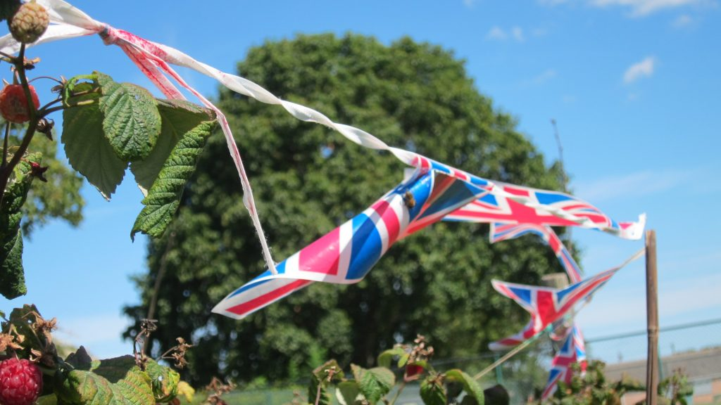 Allotment flags